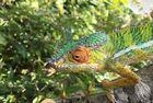 『アイアイ』に会いに行く! マダガスカルの自然、動物たちに出会う4泊5日【アンタナナリボ空港送迎 / 宿泊4泊 / 英語ガイド / 全食事】
