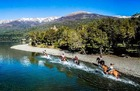ナウエル・ウアピ国立公園で半日乗馬体験【英語ガイド】