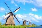 家にいながらオランダ旅行気分!一生に一度は見たい一面のチューリップ!世界遺産の風車群など!【オンライン体験/Zoom利用】