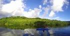 マイラ川午前半日コース!のんびりカヌーを漕いでマングローブ散策【西表島/11月~6月限定】