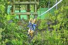 気分はターザン!やんばるの森ジップラインアドベンチャー【沖縄県東村】
