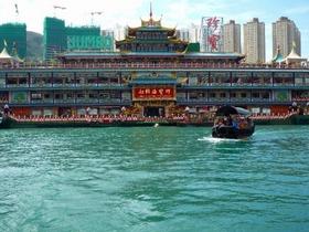 モーニング香港ハイライト