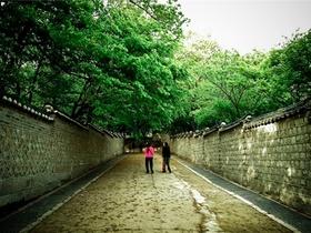 韓国3大世界遺産1日観光ツアー(昌徳宮・宗廟・水原華城)