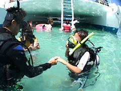 体験ダイビング サンドバー珊瑚礁