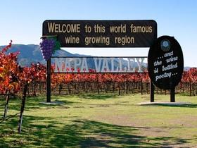 カリフォルニアワインの一大産地ソノマ&ナパバレー日帰り