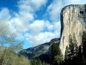 サンフランシスコ発 世界遺産ヨセミテ国立公園日帰りツアー