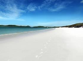 ホワイトヘブンビーチとヒルインレット展望台1日クルーズ ハミルトン島発着