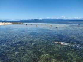 グリーン島エコアドベンチャー(スノーケリング用具レンタルまたはグラスボトムボートクルーズから選択)バッフェランチつき