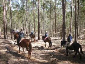 乗馬と牧場体験 半日ツアー