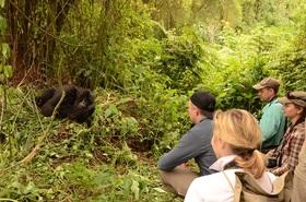 野生のゴリラが見られる!2泊3日ウガンダサファリツアー【エンテベ市内送迎 / 往復フライト利用】