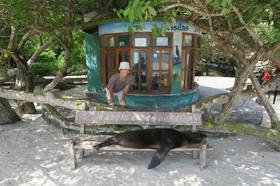 ガラパゴス最大の島、イサベラ島ツアー【サンタクルス島発】