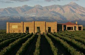 アルゼンチン最大のワイン産地、メンドーサのワインティスティング半日ツアー