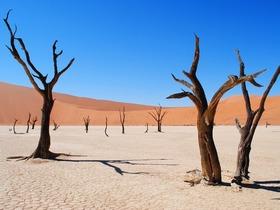 赤いナミビ砂漠や広大なフィッシュリバーキャニオンなどナミビアを知る6泊7日ナミビア・サウス・キャンプツアー【英語ガイド/ウィントフーク発着】