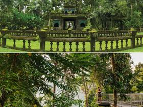 パロネラパーク (2年間パス/ 日本語ガイド園内ツアー付) + 熱帯雨林スカイウォーク(日本語オーディオガイド) セット入場券