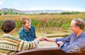 アルゼンチン第二のワイン村、カファジャテワイナリーツアー