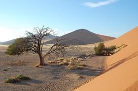 ヨハネスブルグ発!ナミビアの世界遺産ナミブ砂漠を訪れる4泊5日【ヨハネスブルグ空港発着往復航空券/キャンプ2泊+ウィントフーク市内2泊/英語ガイド】