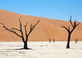 ナイロビ発ナミビアの世界遺産ナミブ砂漠を訪れる4泊5日【ナイロビ空港発着往復航空券/キャンプ2泊+ウィントフーク市内2泊/英語ガイド】