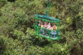 熱帯雨林でゴンドラ体験!エアリアル・トラム90分【サンホセ発着】
