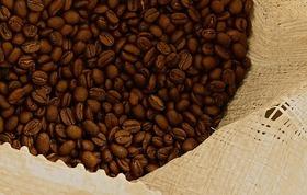 ボゴタ近郊のコーヒー農園「コルマ・コーヒー・ファーム」へ【ボゴタ発】