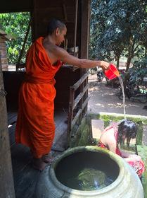 水かけ厄払いでスッキリ!願いを叶えてくれるお寺訪問 (日本語ガイド付)
