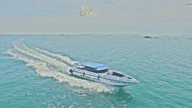 ピピ島の自然を満喫!! ピピ島&カイ島 (スピードボート利用)