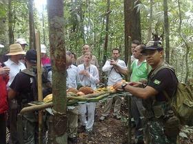 ジャングル終日トレッキングとアクティビティ体験【マナウス発】