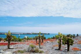 サンタフェ島で陸でのアクティビティを楽しむ【サンタクルス島発】