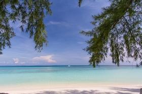 手付かずの自然を満喫!! ピピ島& バンブー島ツアー