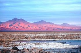 アタカマ塩湖・ミスカンティ湖・赤い大地「ピエドラロハス」を巡る1日【サン・ペドロ・デ・アタカマ発】
