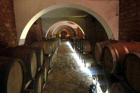 クロアチアワインとアドリア海の幸を堪能! ペリェシャツ半島・ストンツアー【日本人アシスタント付き】