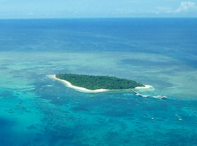 グリーン島ディスカバリー(スノーケリング用具レンタル & グラスボトムボートクルーズ付き)