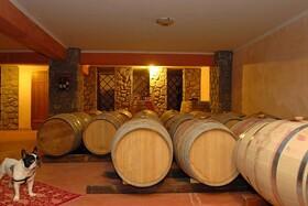 世界遺産メテオラ修道院でローカルワインとギリシャ料理を堪能【英語ガイド / 貸し切り】