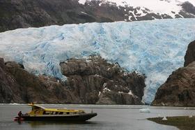 ボートで巡るマゼラン海峡!氷河・クジラ・ペンギン鑑賞【プンタアレーナス発/ 英語ガイド】
