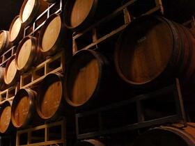 京都丹波ワインを体験! ワイナリーツアー【京都府船井郡】