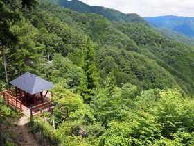 絶景貸切!ランチ付き:奥之院ツアーと森林古道ハイキング【和歌山県高野山】