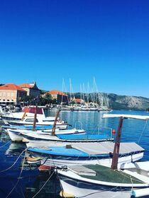 クロアチア政府公認観光ガイドがご案内!フヴァル島「スタリグラッド」プライベートツアー!【オンライン体験/Zoom利用 】