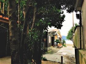 島の歴史と人々の暮らしを知る!国直集落ブラ歩きツアー【奄美大島大和村】