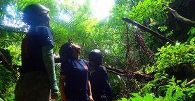 西表島を全力で遊び尽くそう!カヌー・鍾乳洞探検・キャニオニング1日コース【西表島/5月~10月限定】