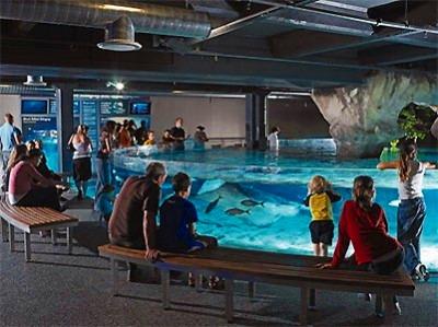 オークランド市内半日観光+ケリータルトン水族館