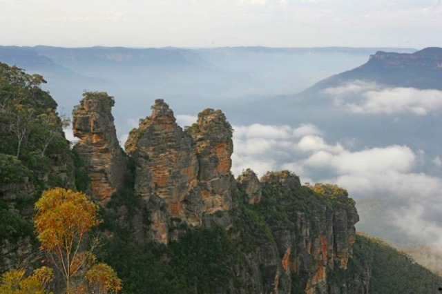 ブルーマウンテンズ[山]エコツアー 世界遺産ブルーマウンテンズ&世界最古の鍾乳洞ジェノランケーブ [IEC]