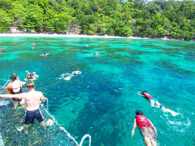 ランカウイ発パヤ島シュノーケリングまたはダイビング