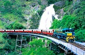 高原列車とスカイレールで行くキュランダとレインフォレストステーション