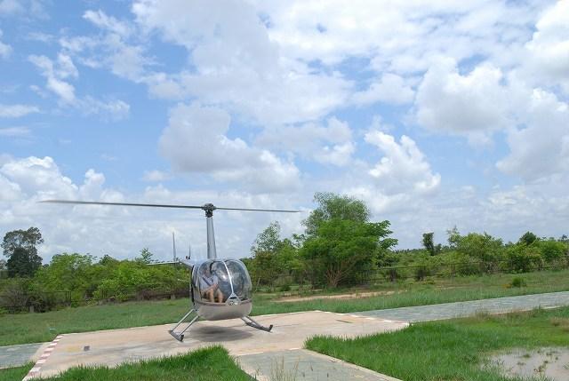 ヘリコプター 遊覧飛行