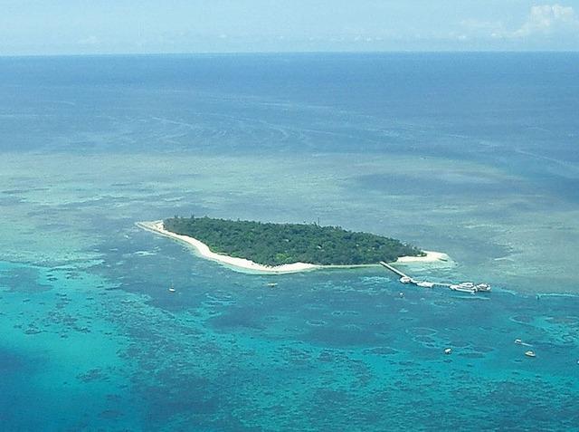 パームコーブ発 グリーン島ディスカバリー