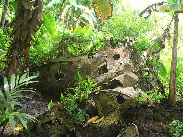 ペリリュー島1日観光