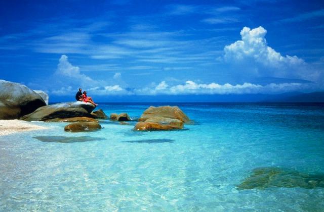 サンゴ礁と熱帯雨林の島 フィッツロイ島へ! フェリー乗船のみ [滞在時間 5時間 または 3時間]