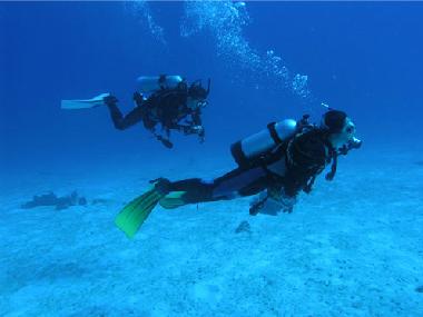 ゴールドコーストで体験ダイビング