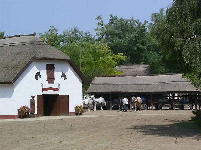 ハンガリー随一の穀倉地帯プスタ1日観光 ケチケメート&ラヨシュミジェの馬術ショー&ハンガリー伝統料理
