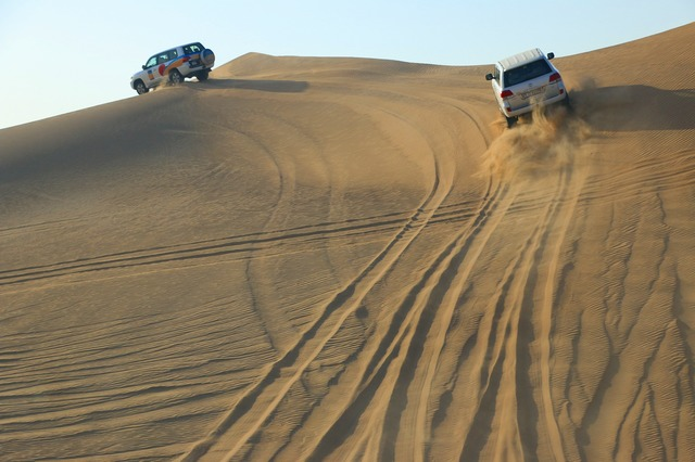 [日本人ガイド] 大人気!4WD砂漠サファリ+ベリーダンスを鑑賞しながらアラブ風ビュッフェディナー!! 【2019年10月までの催行】