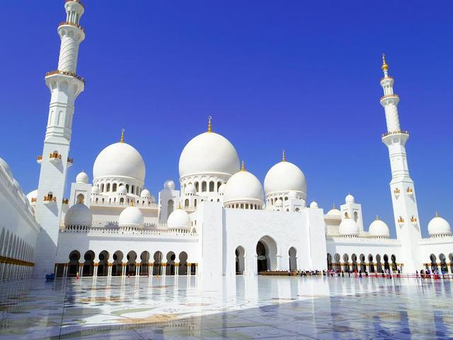 アブダビの見所グランドモスクやエミレーツパレスを巡る半日市内観光 [アブダビ発]